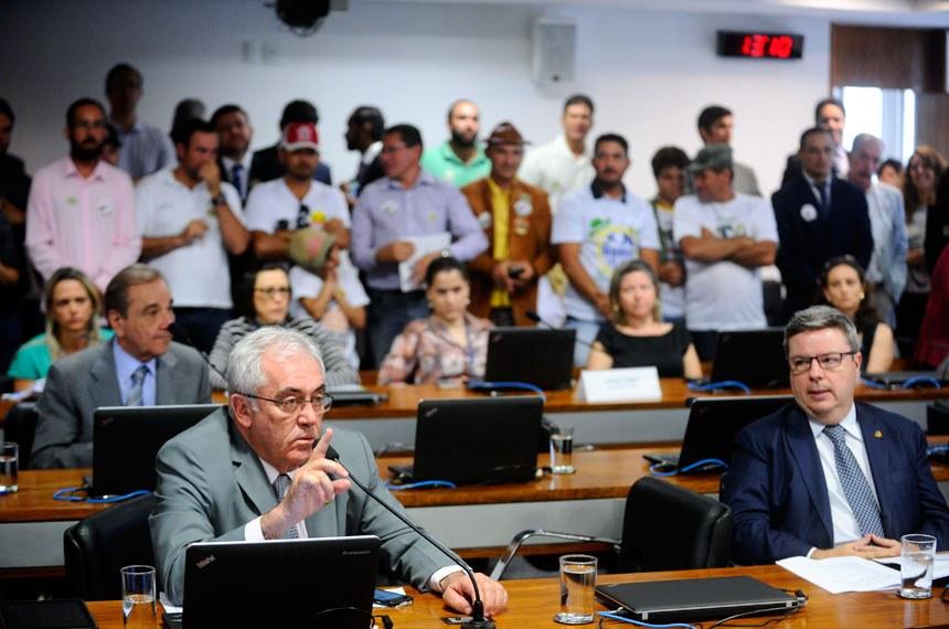 Antes do plenário, o projeto foi aprovado na Comissão de Educação, Cultura e Esporte (Foto: Agência Senado)